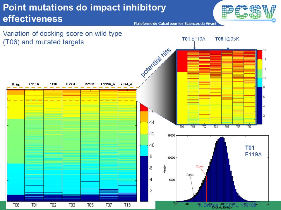 Point mutations do impact inhibitory effectiveness