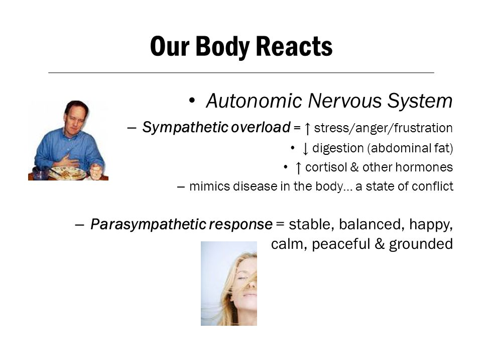 Our Body Reacts Autonomic Nervous System