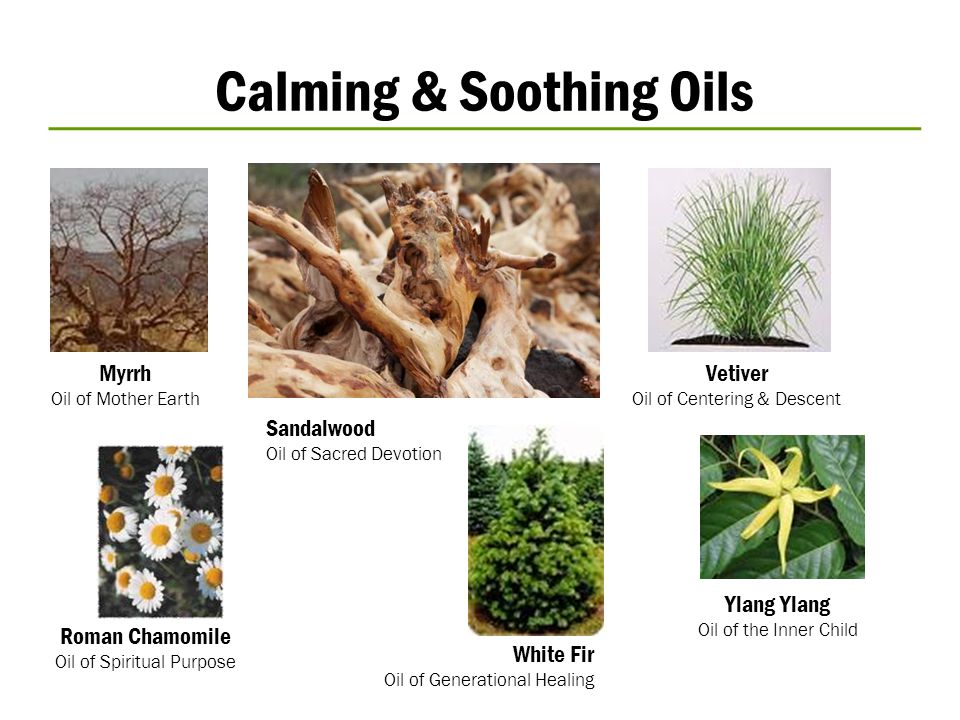 Calming & Soothing Oils