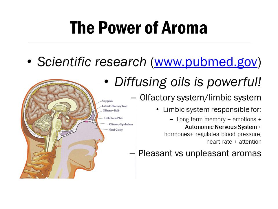 The Power of Aroma Scientific research (www.pubmed.gov)