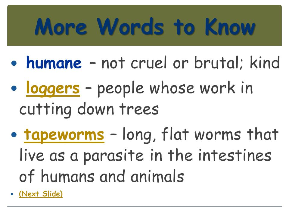 More Words to Know humane – not cruel or brutal; kind