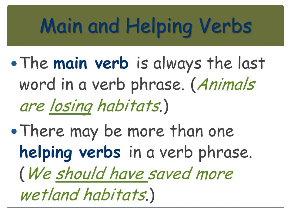 Main and Helping Verbs The main verb is always the last word in a verb phrase. (Animals are losing habitats.)
