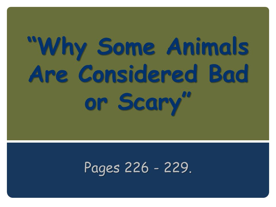 Why Some Animals Are Considered Bad or Scary Pages 226 - 229.