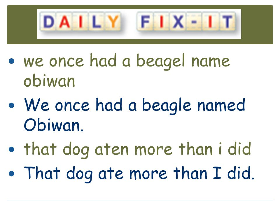 we once had a beagel name obiwan