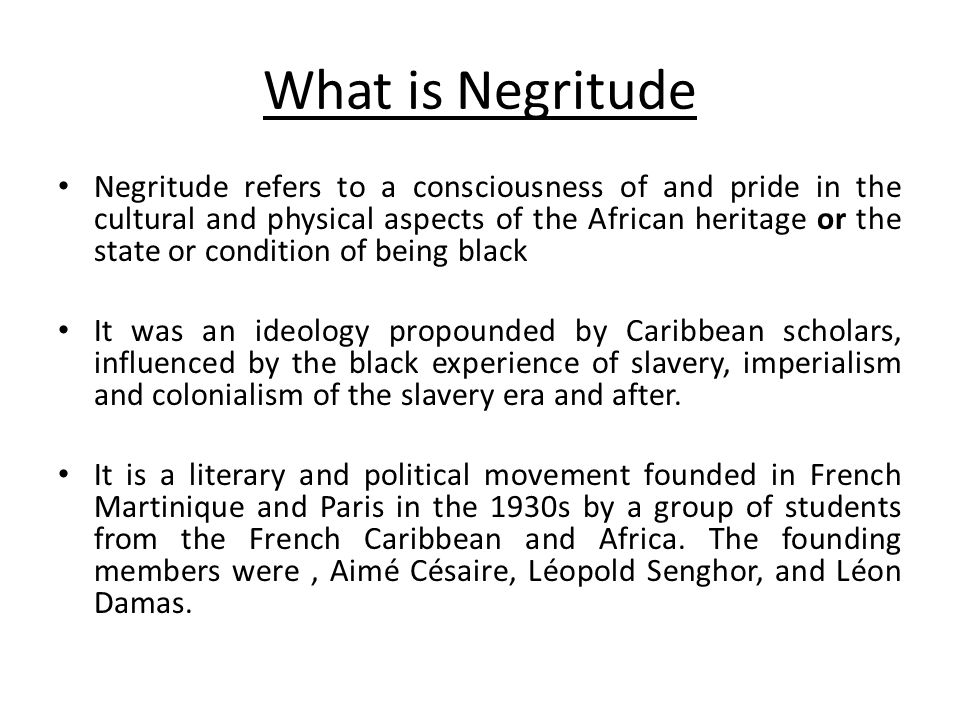 What is Negritude