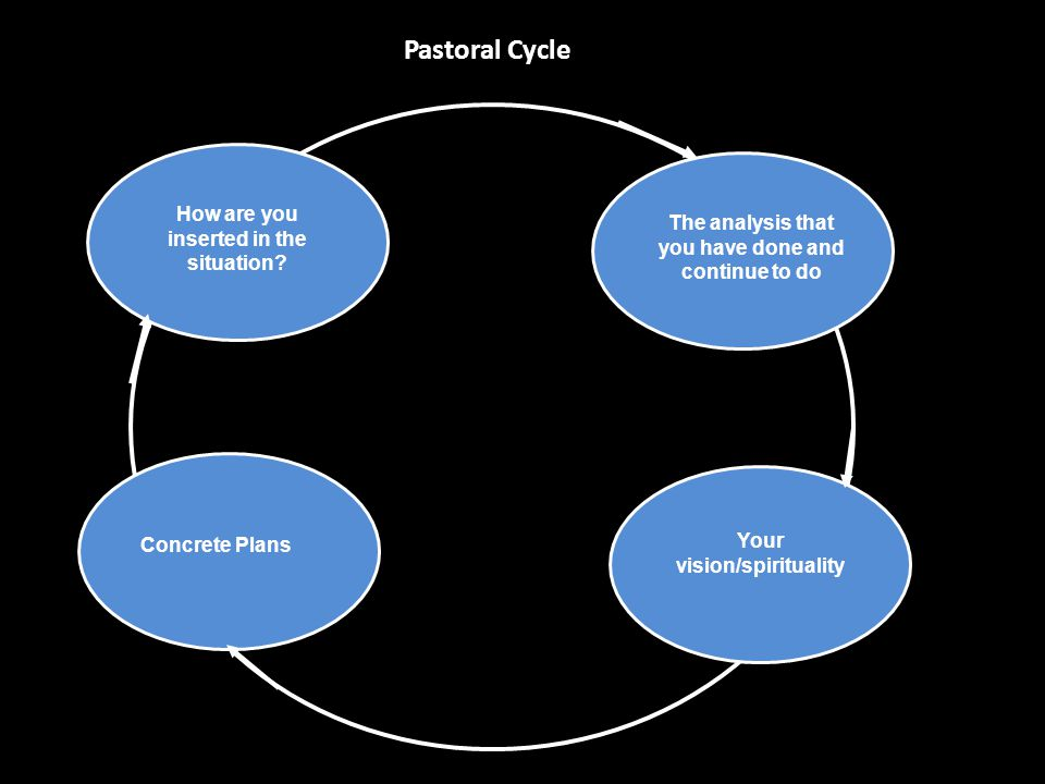 Pastoral Cycle How are you inserted in the situation