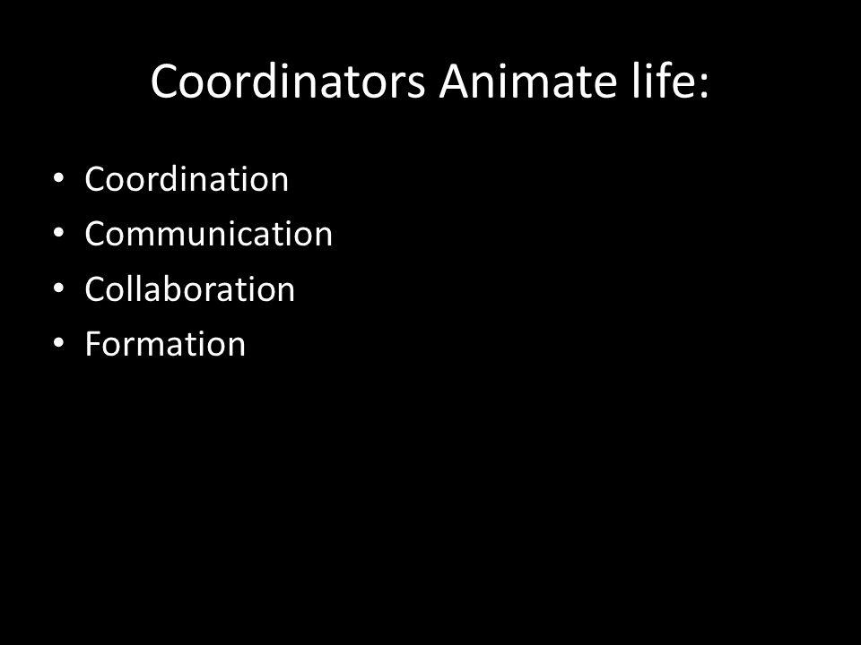Coordinators Animate life: