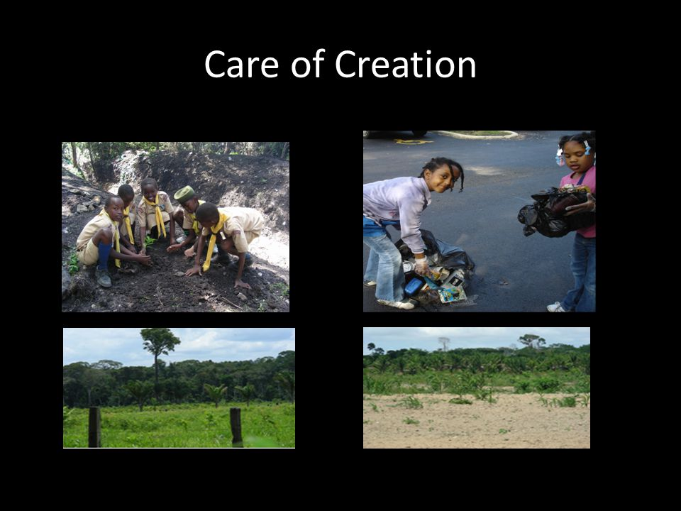 Care of Creation