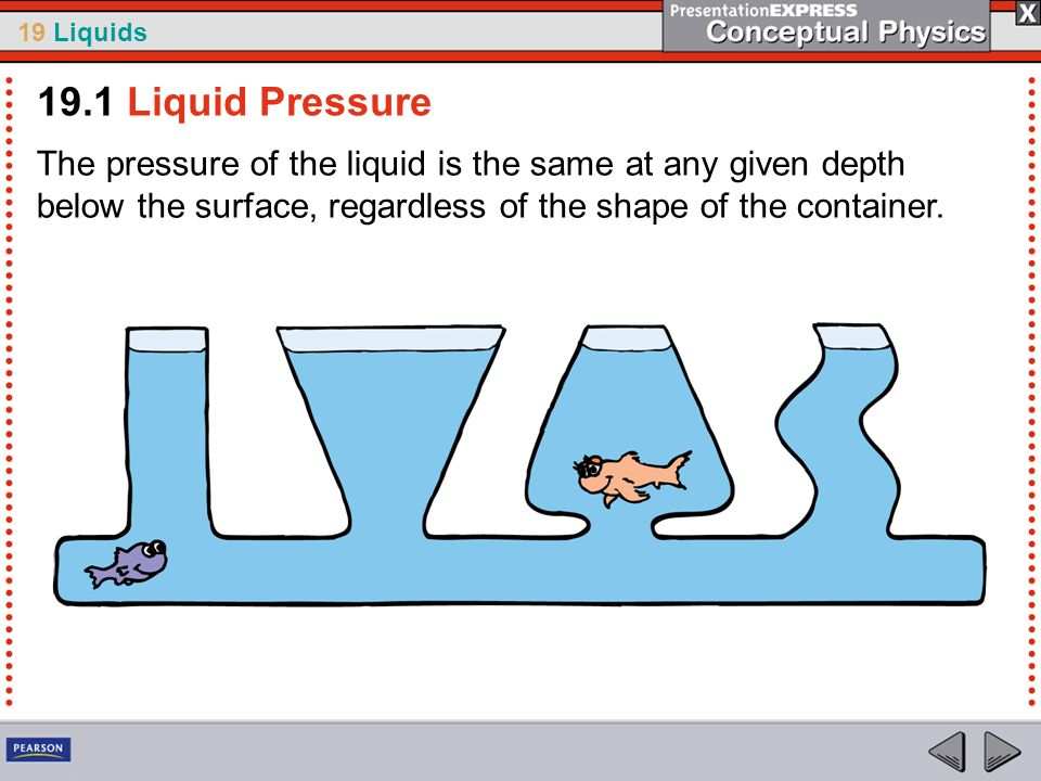 19.1 Liquid PressureThe pressure of the liquid is the same at any given depth below the surface, regardless of the shape of the container.