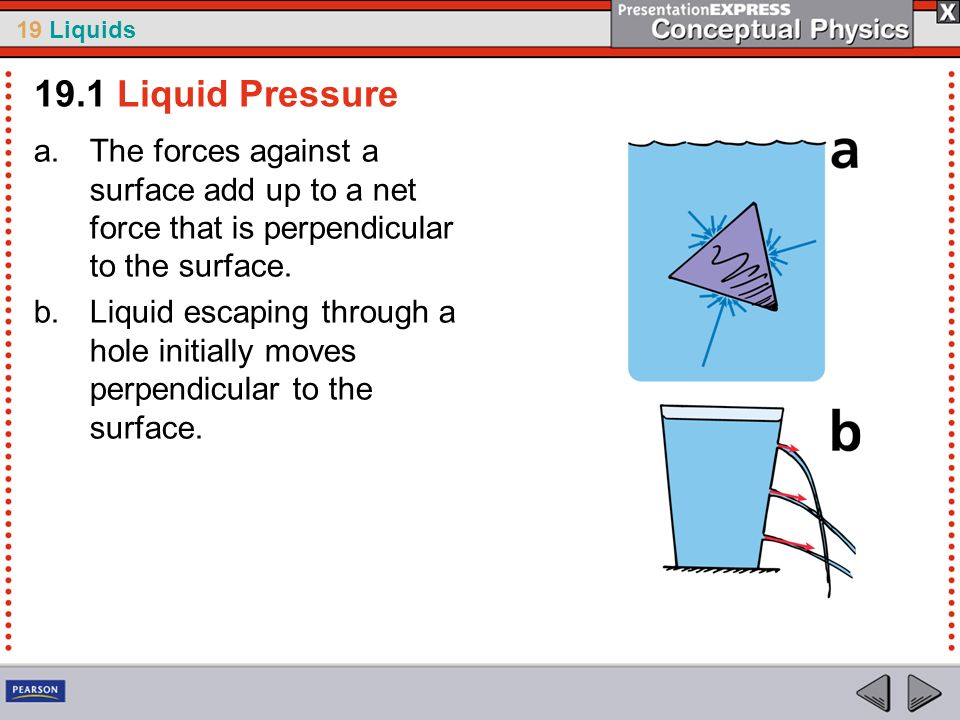 19.1 Liquid PressureThe forces against a surface add up to a net force that is perpendicular to the surface.