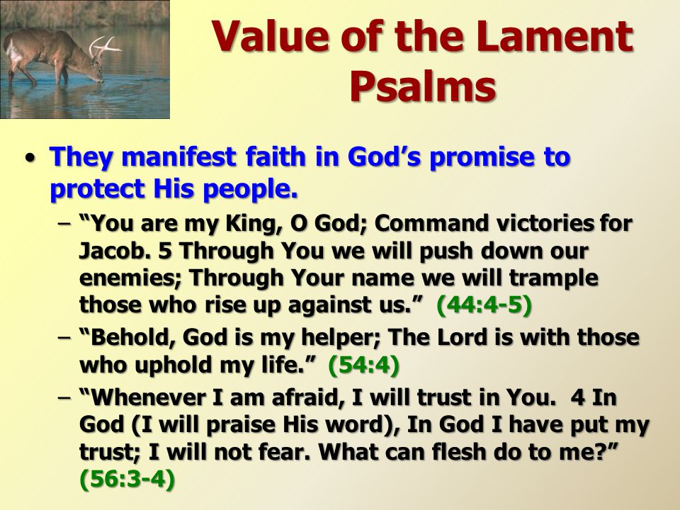 Value of the Lament Psalms