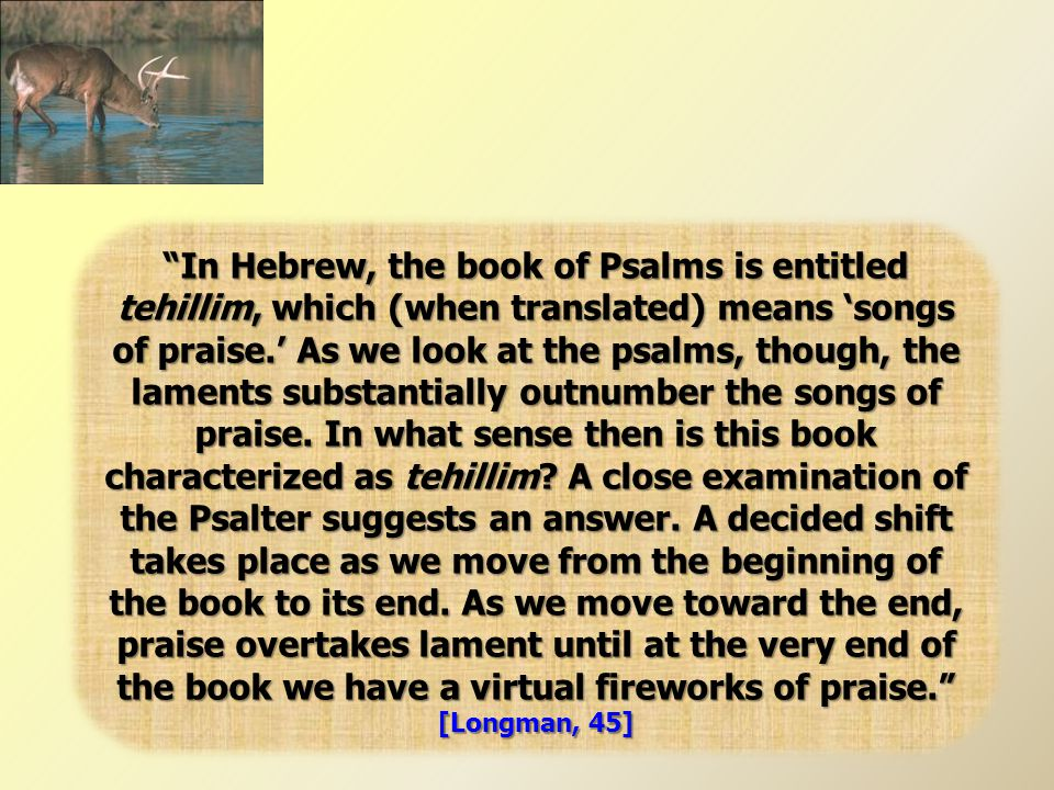 In Hebrew, the book of Psalms is entitled tehillim, which (when translated) means 'songs of praise.' As we look at the psalms, though, the laments substantially outnumber the songs of praise.