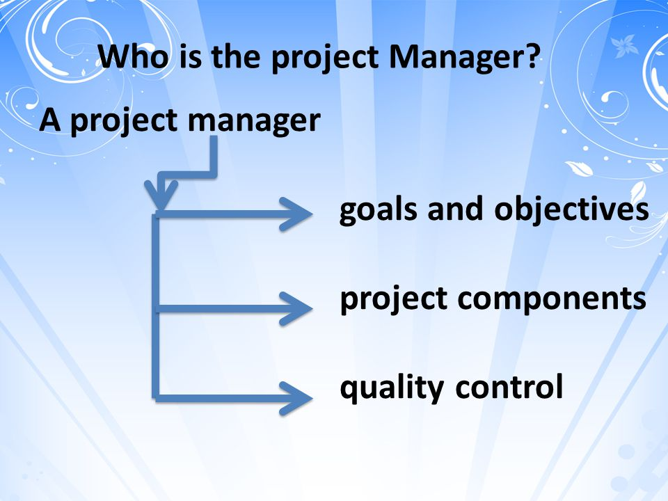 Who is the project Manager