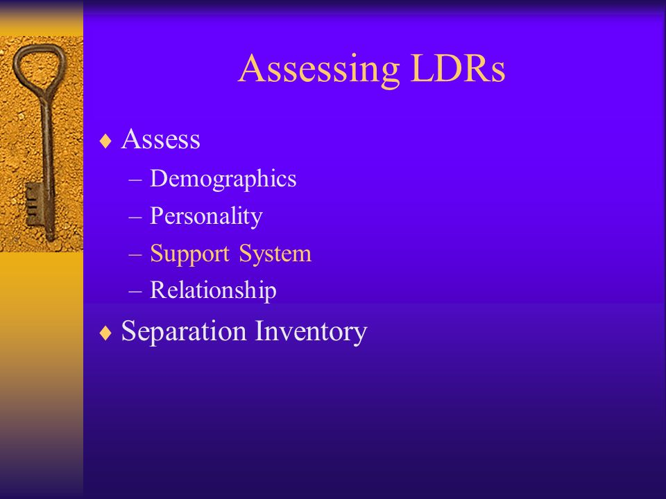 Assessing LDRs Assess Separation Inventory Demographics Personality