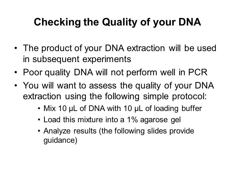 Checking the Quality of your DNA