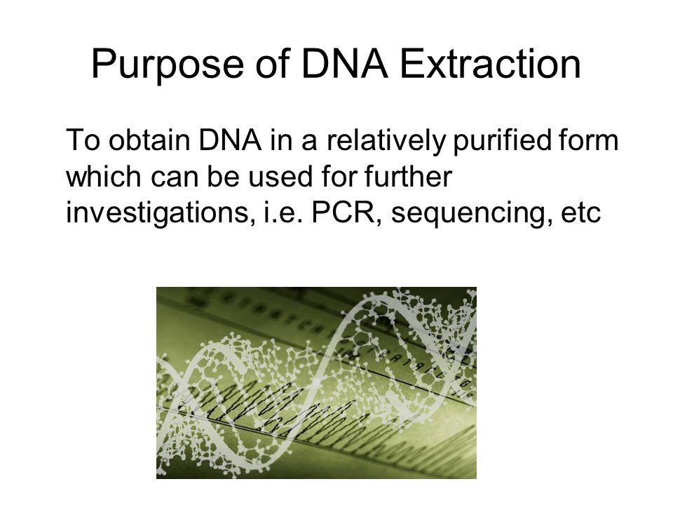 Purpose of DNA Extraction
