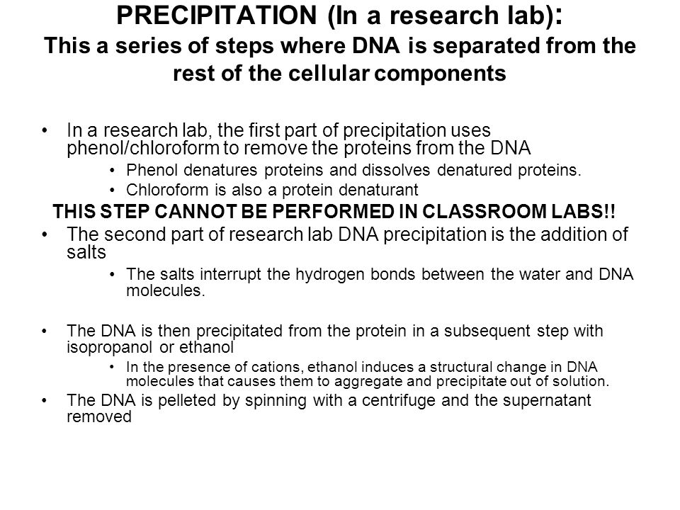 PRECIPITATION (In a research lab): This a series of steps where DNA is separated from the rest of the cellular components