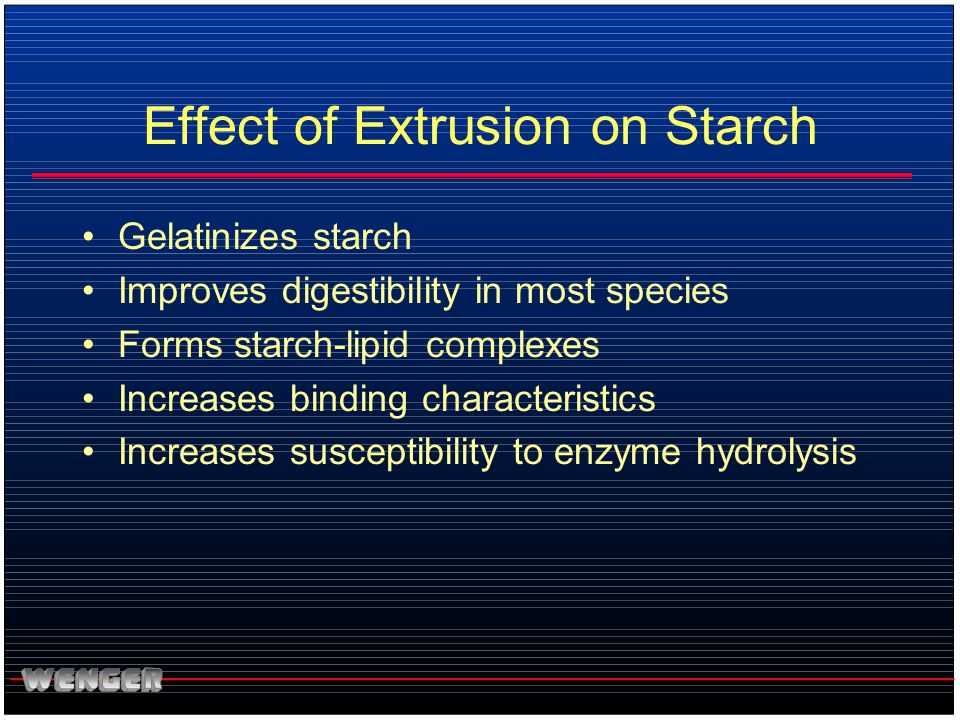 Effect of Extrusion on Starch