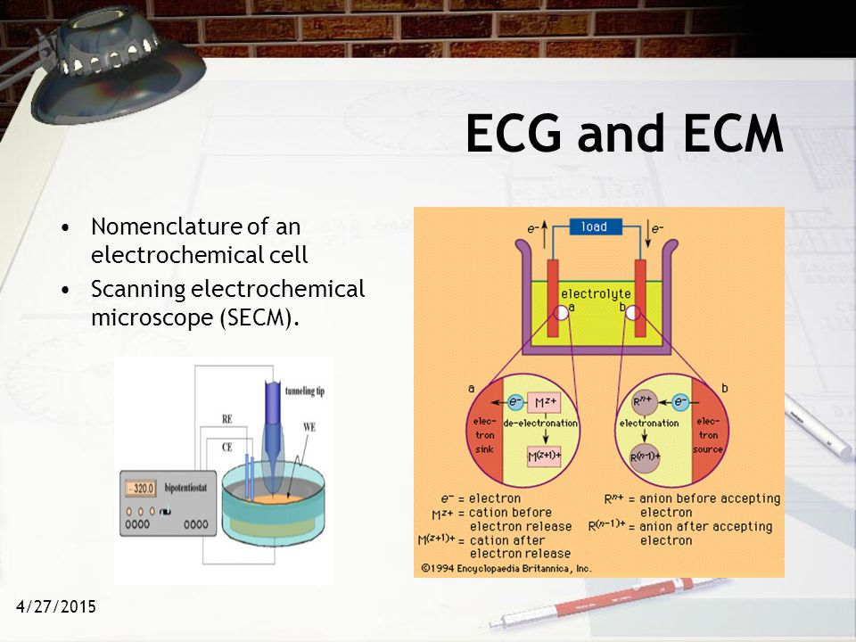 ECG and ECM Nomenclature of an electrochemical cell