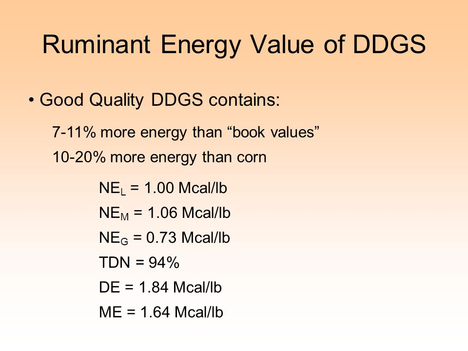 Ruminant Energy Value of DDGS