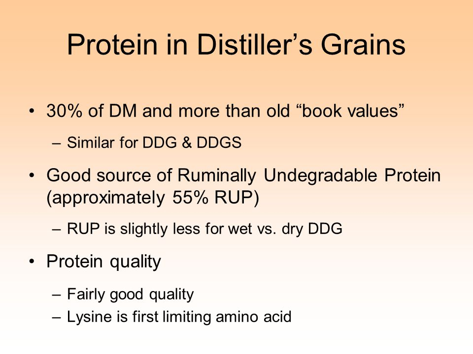 Protein in Distiller's Grains