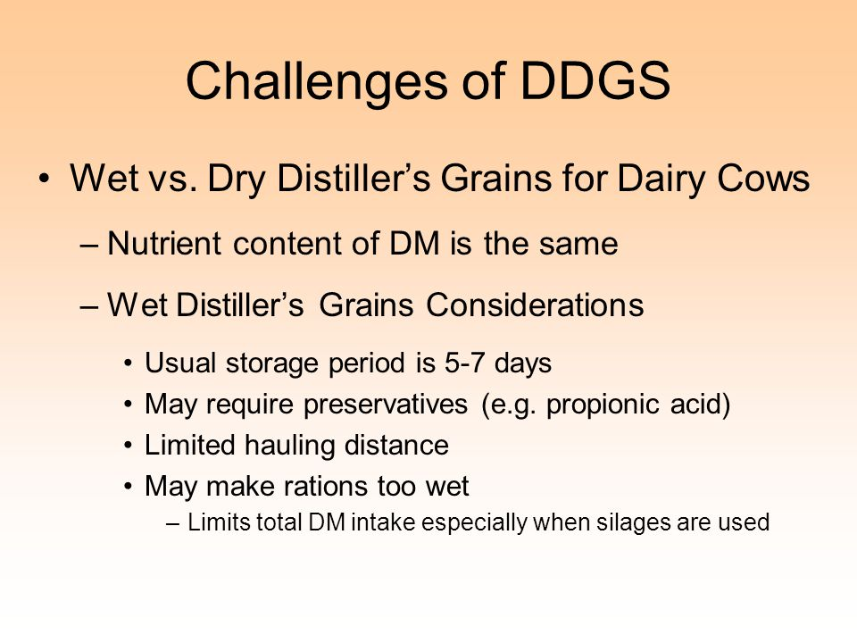 Challenges of DDGS Wet vs. Dry Distiller's Grains for Dairy Cows