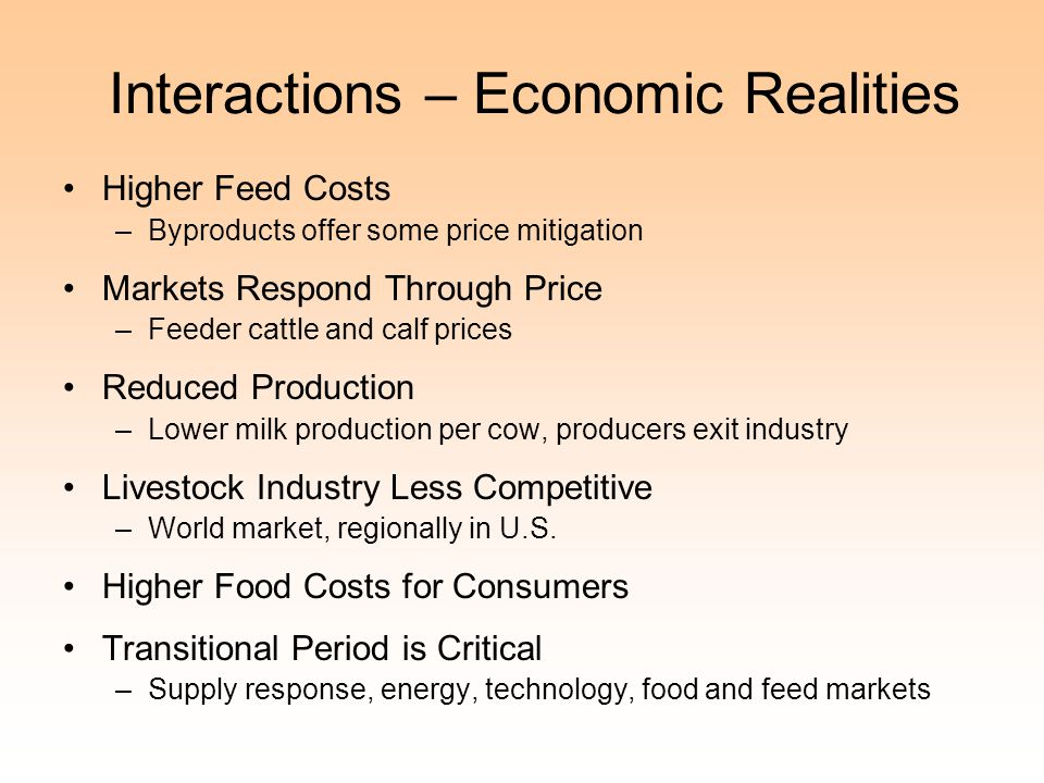 Interactions – Economic Realities
