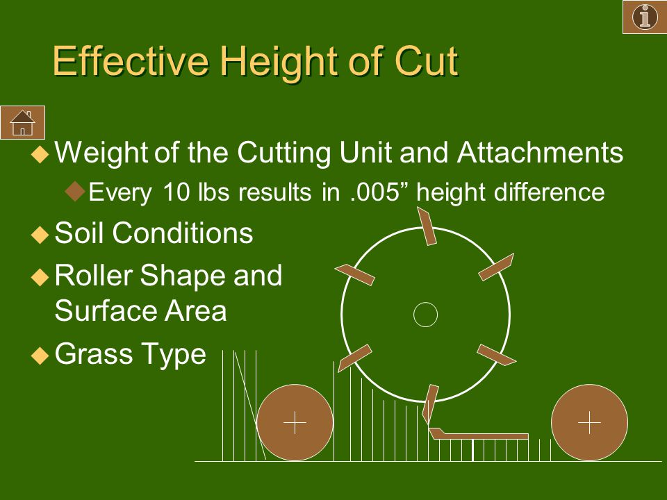 Effective Height of Cut