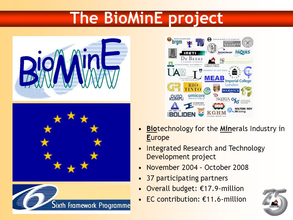 The BioMinE project Biotechnology for the Minerals Industry in Europe