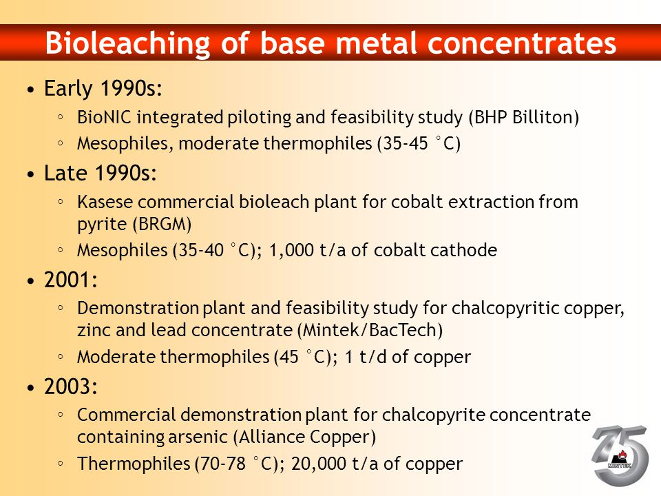 Bioleaching of base metal concentrates