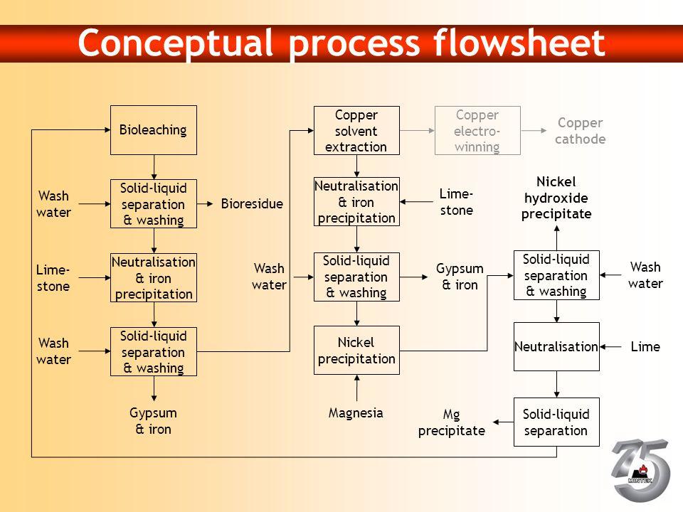 Conceptual process flowsheet
