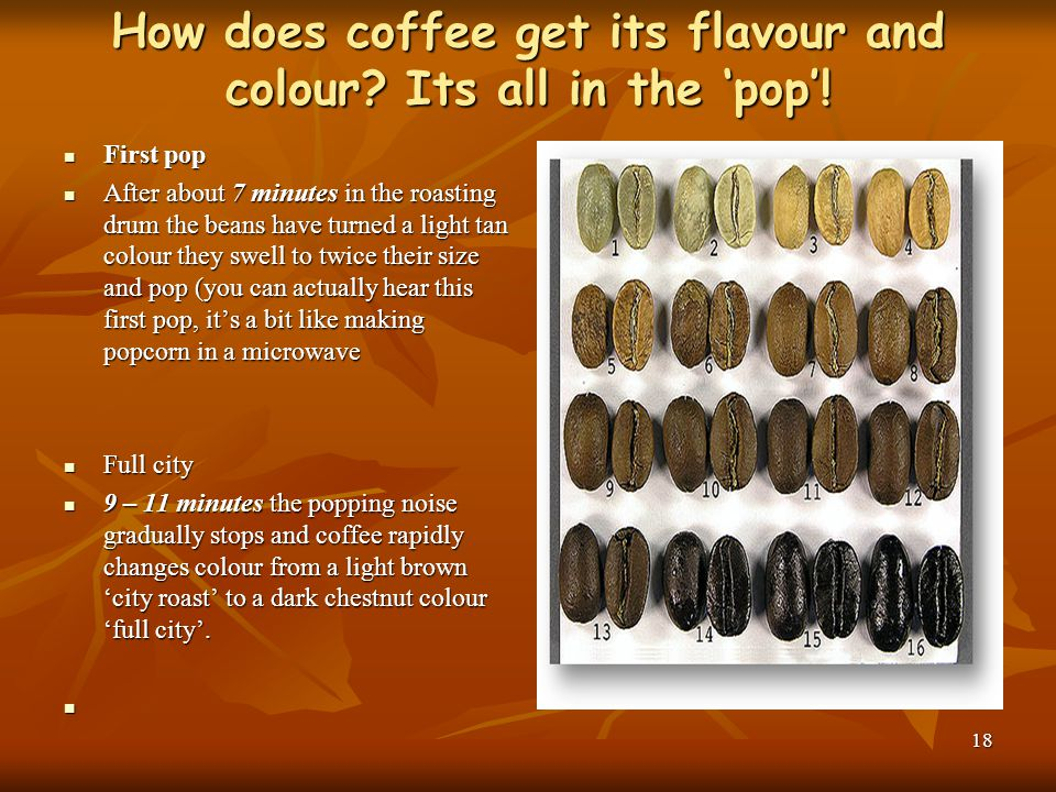 How does coffee get its flavour and colour Its all in the 'pop'!