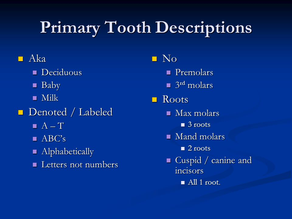Primary Tooth Descriptions