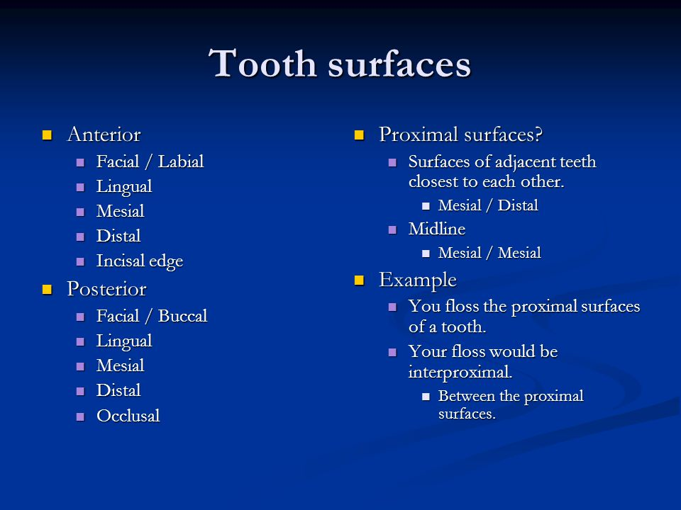Tooth surfaces Anterior Posterior Proximal surfaces Example
