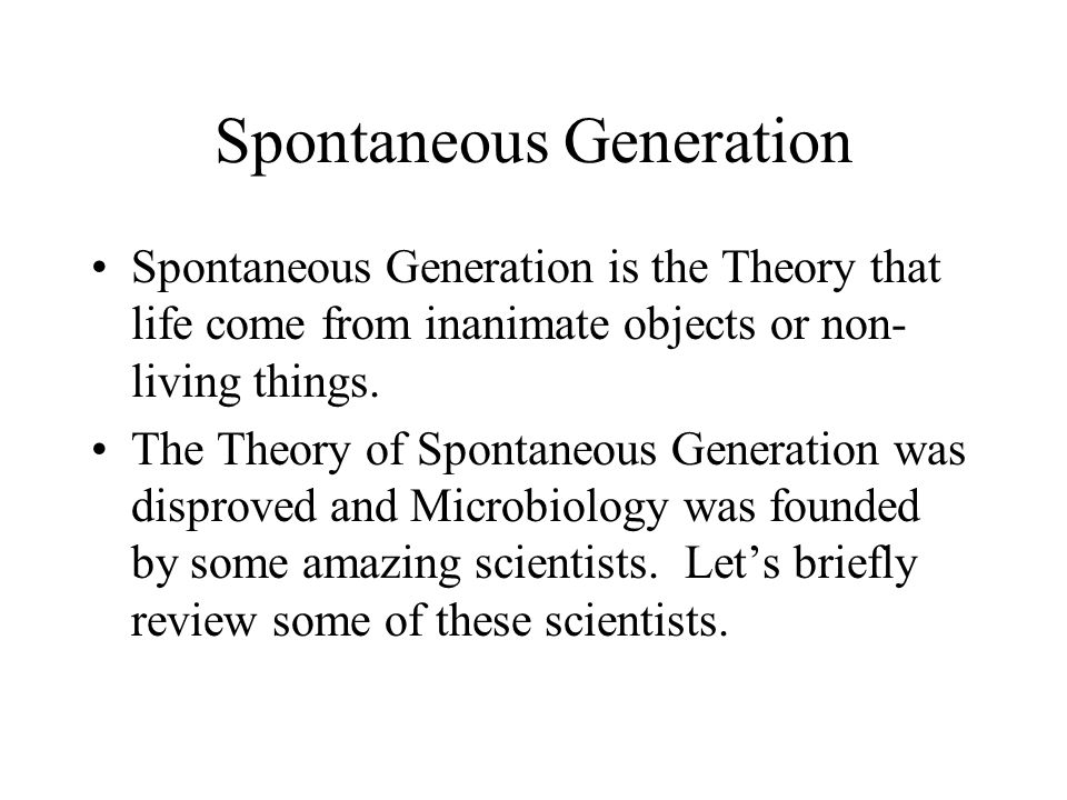 The theory of spontaneous generation