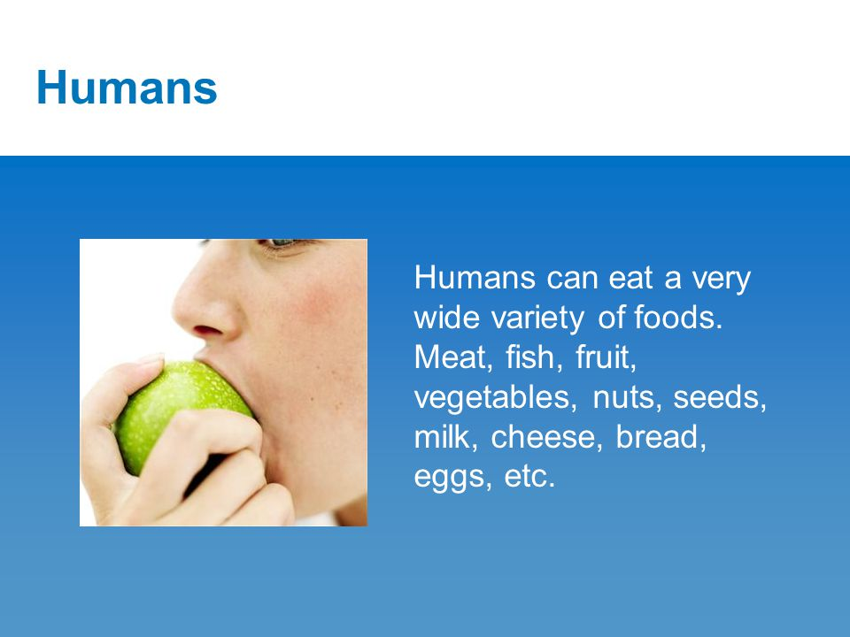 Humans Humans can eat a very wide variety of foods.