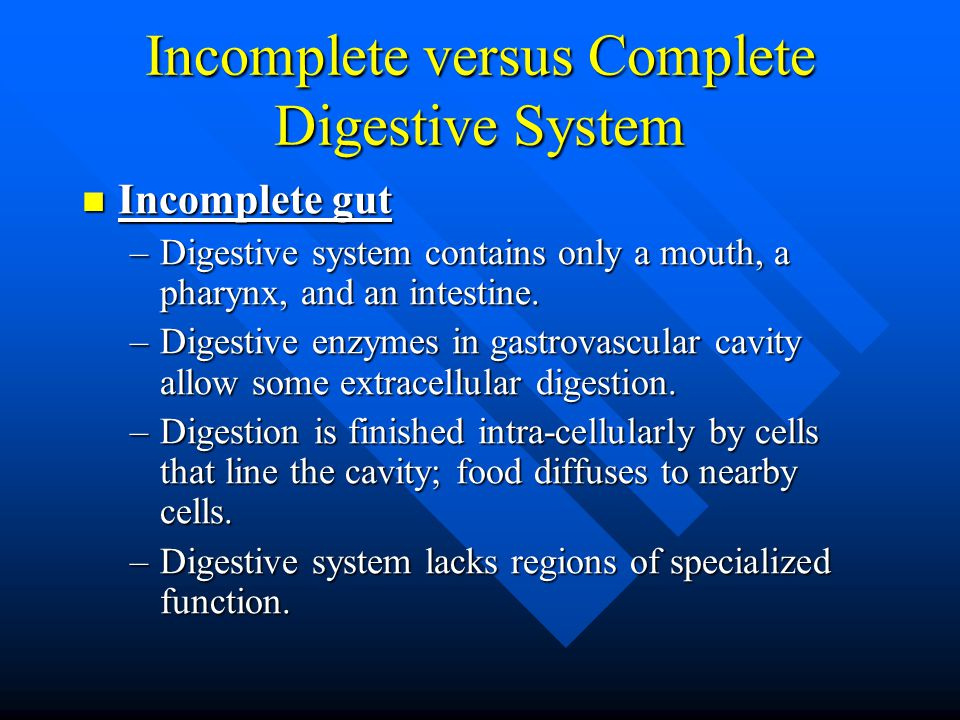 Incomplete versus Complete Digestive System