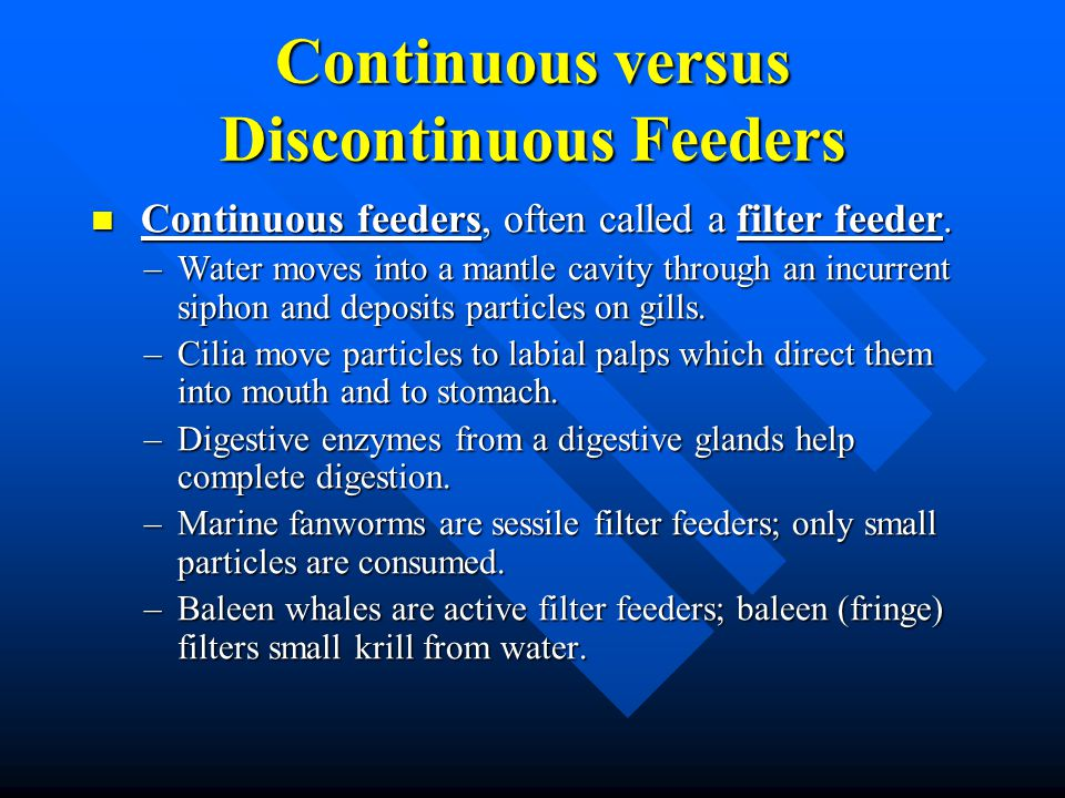 Continuous versus Discontinuous Feeders