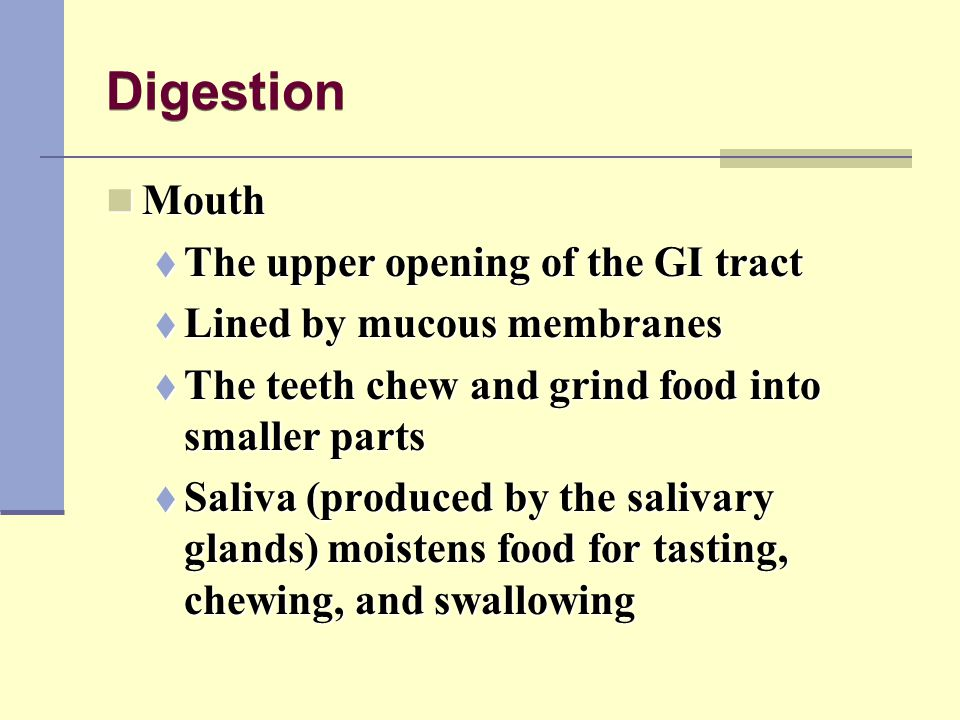 Digestion Mouth The upper opening of the GI tract