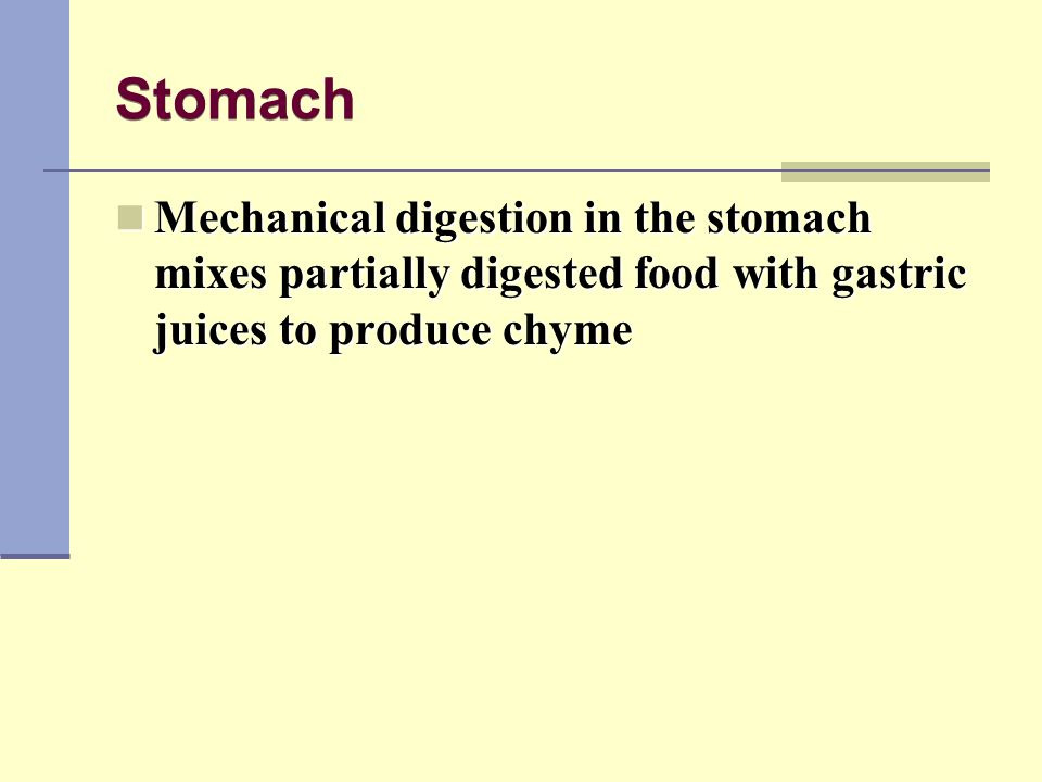 Stomach Mechanical digestion in the stomach mixes partially digested food with gastric juices to produce chyme.