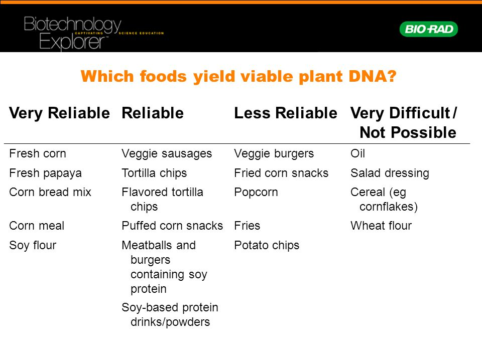 Which foods yield viable plant DNA