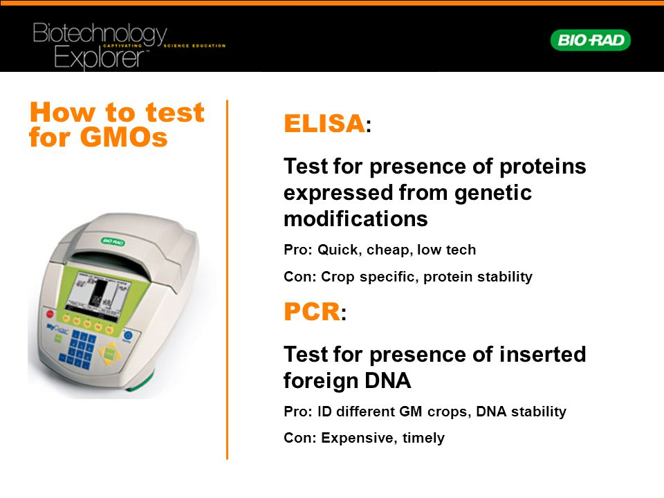 How to test for GMOs ELISA: PCR: