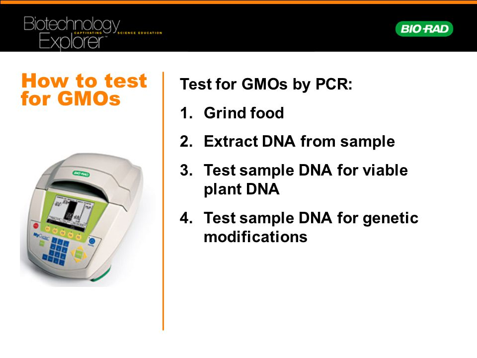 How to test for GMOs Test for GMOs by PCR: Grind food