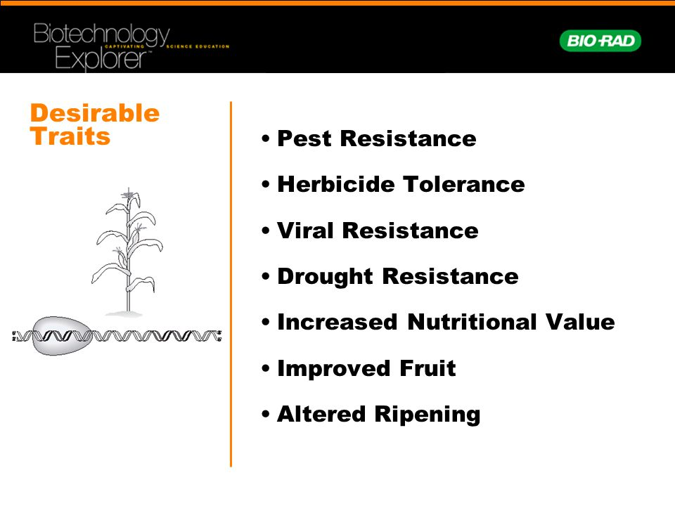 Desirable Traits Pest Resistance Herbicide Tolerance Viral Resistance