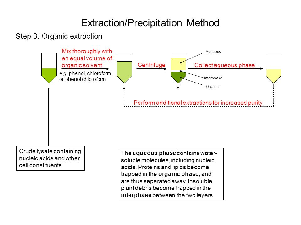 Extraction/Precipitation Method