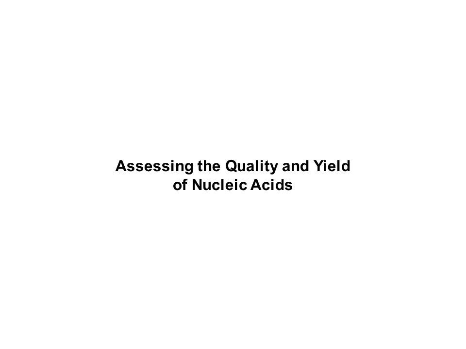 Assessing the Quality and Yield of Nucleic Acids