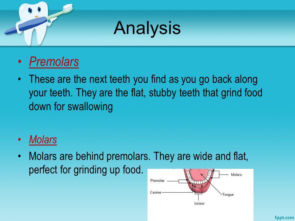 Analysis Premolars.
