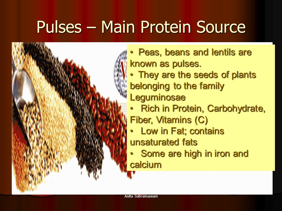 Pulses – Main Protein Source