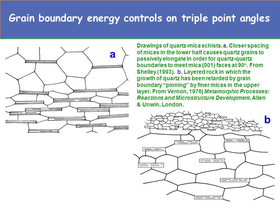 Grain boundary energy controls on triple point angles