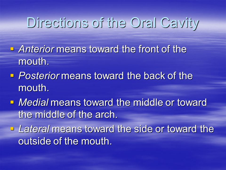 Directions of the Oral Cavity